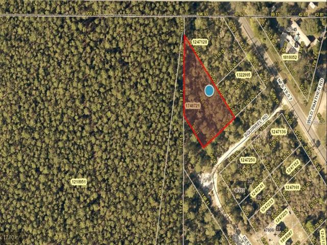 Address Not Published, Altoona, FL 32702 (MLS #G5011119) :: The Duncan Duo Team