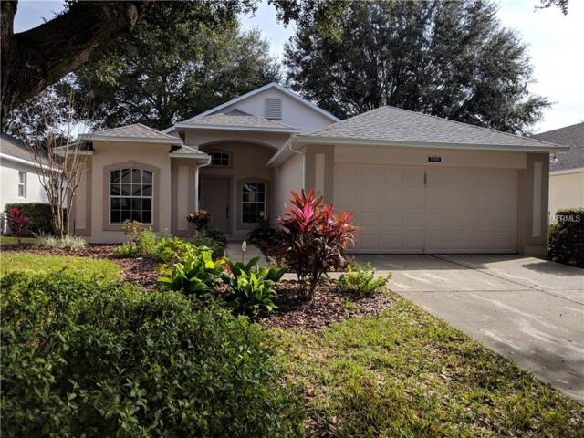 3709 Doune Way, Clermont, FL 34711 (MLS #G5011184) :: RealTeam Realty