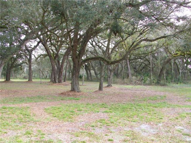 Cr 654, Bushnell, FL 33513 (MLS #G5011262) :: Baird Realty Group