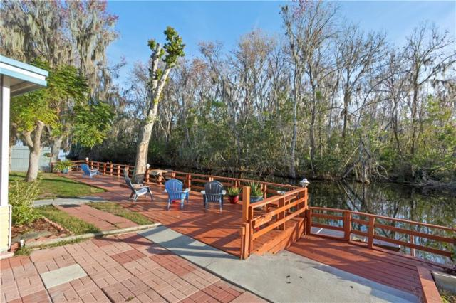 33502 Barksdale Drive, Leesburg, FL 34788 (MLS #G5011365) :: KELLER WILLIAMS CLASSIC VI
