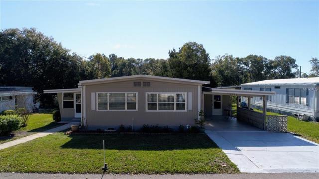 2026 Lamplight Circle, Mount Dora, FL 32757 (MLS #G5011803) :: Griffin Group