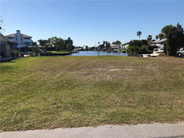 Cedarbrook Lane, Hernando Beach, FL 34607 (MLS #G5011955) :: Griffin Group