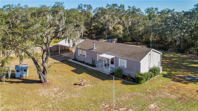35420 Goose Creek Road, Leesburg, FL 34788 (MLS #G5012083) :: KELLER WILLIAMS CLASSIC VI