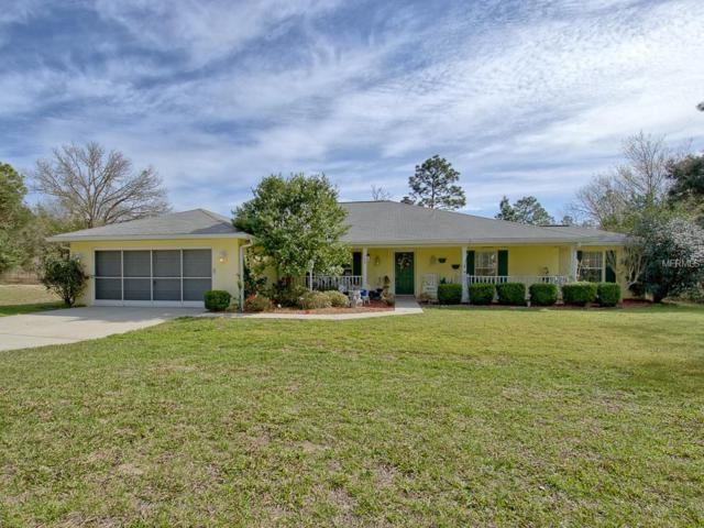 389 SW Big Tree Road, Dunnellon, FL 34431 (MLS #G5012237) :: Griffin Group