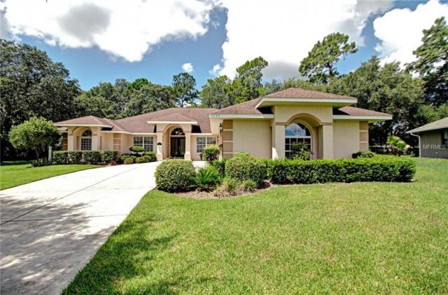 5029 County Road 125B1, Wildwood, FL 34785 (MLS #G5012291) :: RealTeam Realty