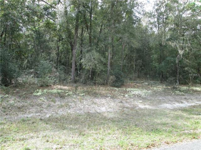 County Road 656F, Webster, FL 33597 (MLS #G5012526) :: The Duncan Duo Team