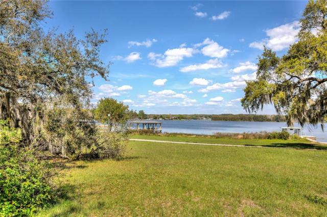 1228 Park Place, Mount Dora, FL 32757 (MLS #G5013273) :: Team Suzy Kolaz