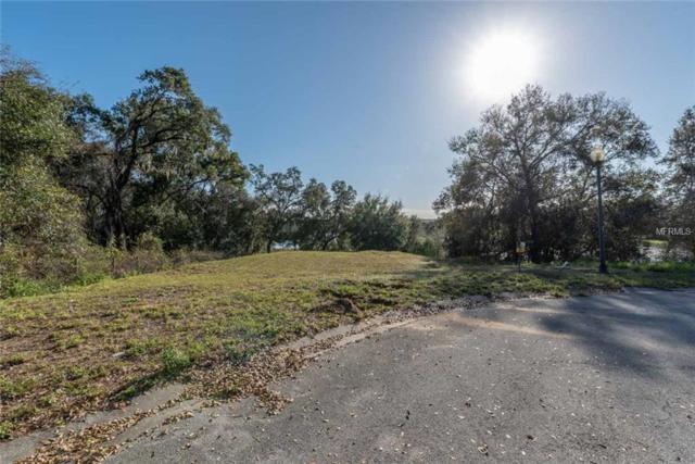 101 Sequoia Valley Court, Minneola, FL 34715 (MLS #G5013278) :: Armel Real Estate