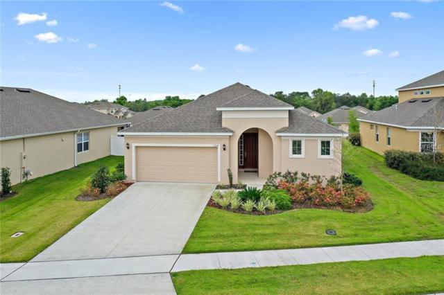 1154 Merion Drive, Mount Dora, FL 32757 (MLS #G5013329) :: KELLER WILLIAMS CLASSIC VI
