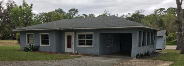 423 Dora Avenue, Tavares, FL 32778 (MLS #G5013330) :: KELLER WILLIAMS CLASSIC VI