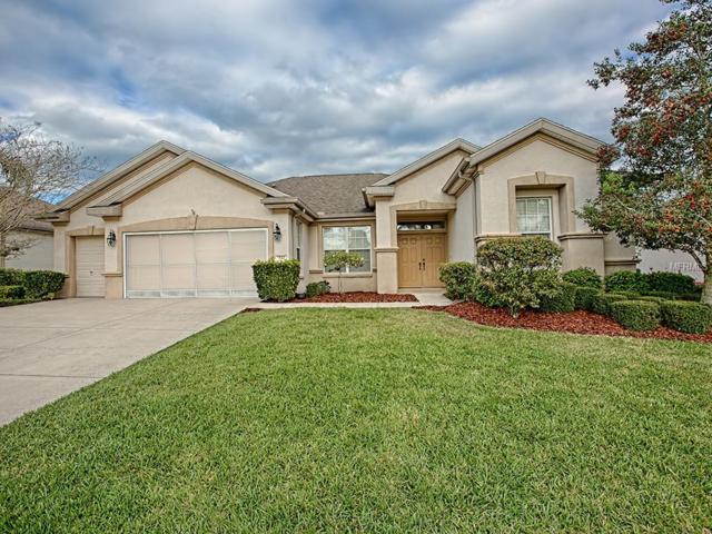 9833 SE 125TH Lane, Summerfield, FL 34491 (MLS #G5013341) :: Delgado Home Team at Keller Williams