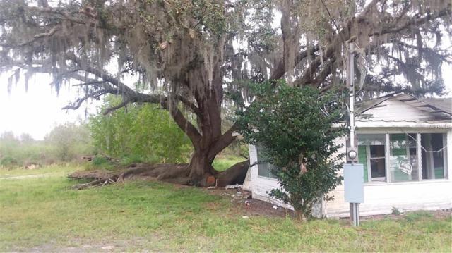 14116 Carter Island Road, Groveland, FL 34736 (MLS #G5013352) :: The Light Team