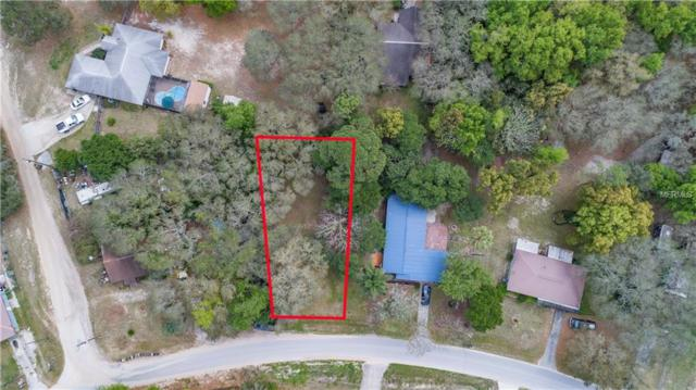 Orange Circle, Lady Lake, FL 32159 (MLS #G5013381) :: Mark and Joni Coulter | Better Homes and Gardens
