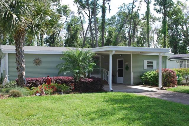 2820 Manatee Road, Tavares, FL 32778 (MLS #G5013406) :: KELLER WILLIAMS CLASSIC VI