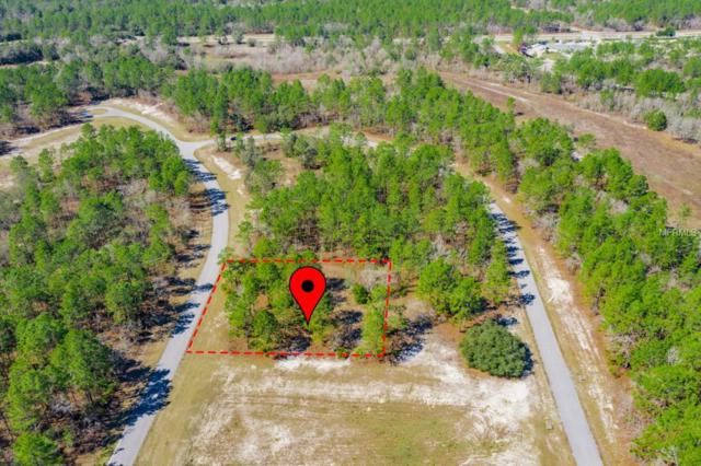 Sw 64Th Terrace Road, Ocala, FL 34473 (MLS #G5013475) :: The Duncan Duo Team