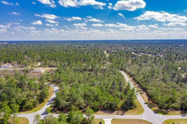 Sw 165Th Street Road, Ocala, FL 34473 (MLS #G5013479) :: The Duncan Duo Team