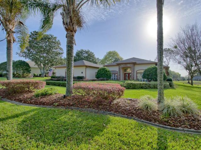 6141 Spinnaker Loop, Lady Lake, FL 32159 (MLS #G5013504) :: The Duncan Duo Team