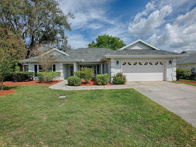 11571 SE 172ND Loop, Summerfield, FL 34491 (MLS #G5013565) :: Delgado Home Team at Keller Williams