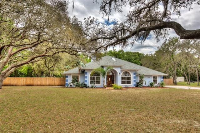 23934 Wolf Branch Road, Sorrento, FL 32776 (MLS #G5013601) :: Burwell Real Estate