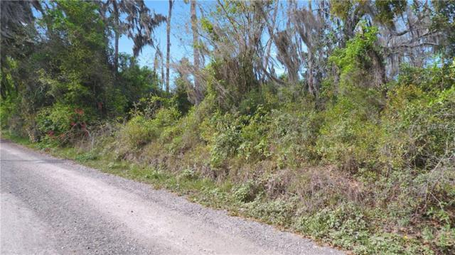 SE 144TH AVE, Weirsdale, FL 32195 (MLS #G5013615) :: Sarasota Home Specialists
