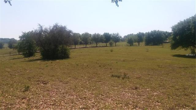 21130 County Road 455, Clermont, FL 34711 (MLS #G5013616) :: Burwell Real Estate