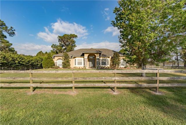 11017 Arrowtree Boulevard, Clermont, FL 34715 (MLS #G5013664) :: Mark and Joni Coulter | Better Homes and Gardens