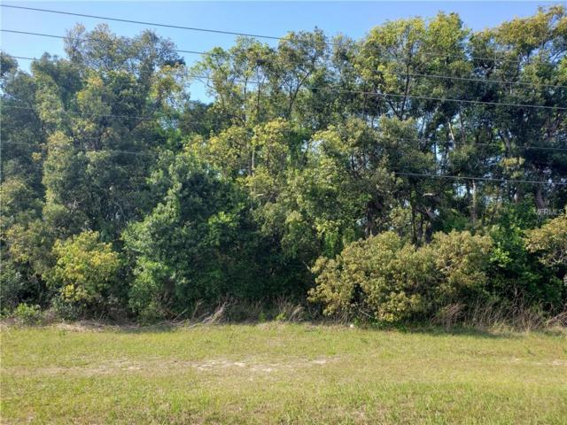 Turnberry Avenue, Mount Plymouth, FL 32776 (MLS #G5013682) :: RE/MAX CHAMPIONS