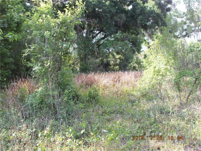 2591 State Rd 50, Webster, FL 33597 (MLS #G5013712) :: Premier Home Experts