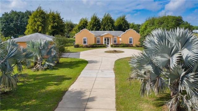 6816 Greengrove Boulevard, Clermont, FL 34714 (MLS #G5014361) :: The Duncan Duo Team