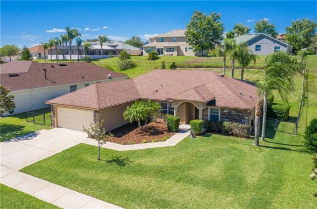 13023 Antique Oak Street, Clermont, FL 34711 (MLS #G5014875) :: Dalton Wade Real Estate Group