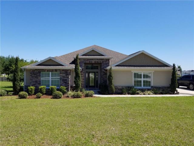 4393 County Road 121D, Wildwood, FL 34785 (MLS #G5014921) :: RealTeam Realty