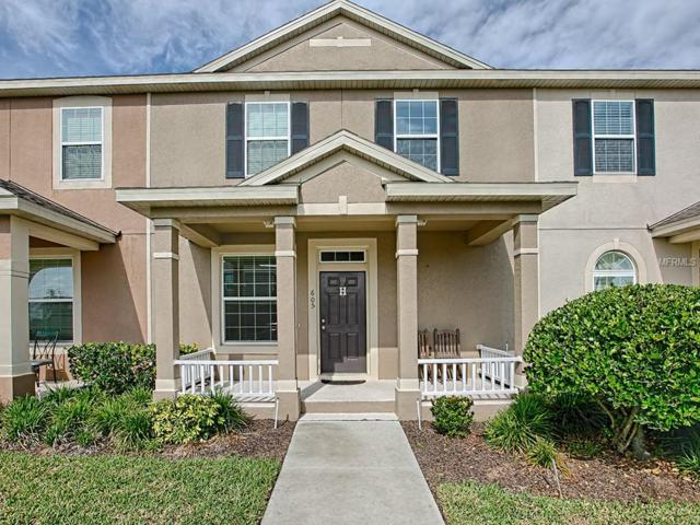605 Tiger Bay Court, Groveland, FL 34736 (MLS #G5014949) :: RealTeam Realty