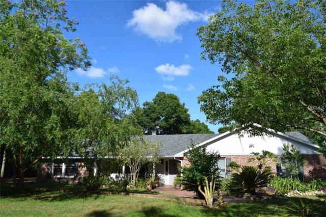 3659 Laughlin Road, Zellwood, FL 32798 (MLS #G5015055) :: The Duncan Duo Team