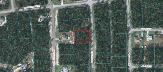 0 SW 175TH Loop, Ocala, FL 34473 (MLS #G5015065) :: The Duncan Duo Team