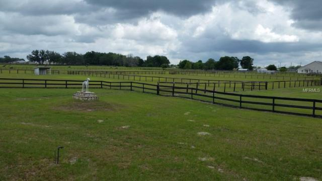 3764 County Road 214, Oxford, FL 34484 (MLS #G5015305) :: The Duncan Duo Team