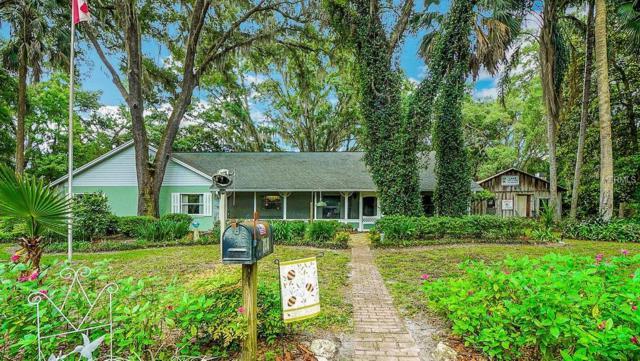 21836 Freeman Drive, Umatilla, FL 32784 (MLS #G5015350) :: Team Bohannon Keller Williams, Tampa Properties