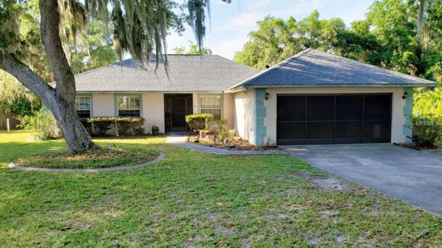 5353 Old Hickory Lane, Fruitland Park, FL 34731 (MLS #G5015385) :: Team Bohannon Keller Williams, Tampa Properties