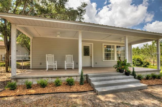 14510 SE 170TH Street, Weirsdale, FL 32195 (MLS #G5015570) :: The Duncan Duo Team