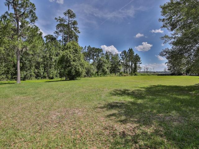 1050 Juliette Boulevard, Mount Dora, FL 32757 (MLS #G5015603) :: The Duncan Duo Team
