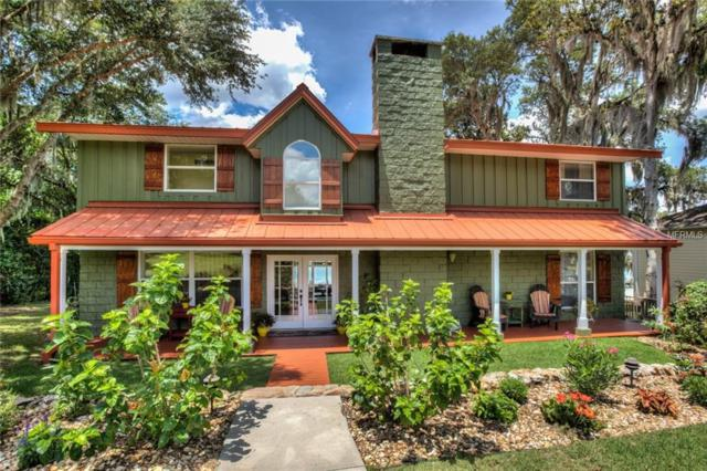 14494 SE 143RD Terrace, Weirsdale, FL 32195 (MLS #G5015741) :: The Duncan Duo Team