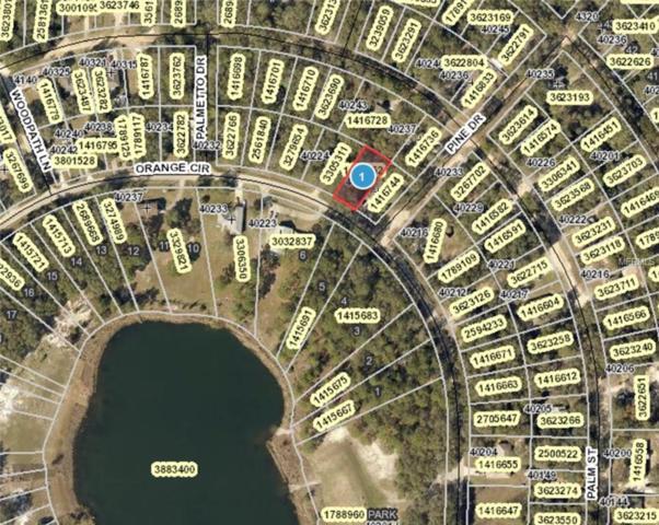 Orange Circle, Lady Lake, FL 32159 (MLS #G5015800) :: The Duncan Duo Team