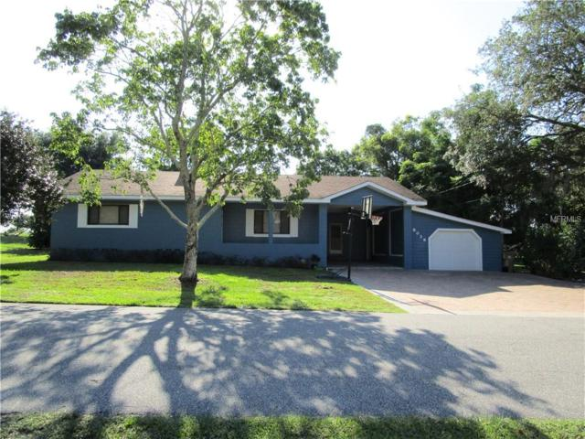 8028 Grovemont Estates Road, Groveland, FL 34736 (MLS #G5015833) :: Team Bohannon Keller Williams, Tampa Properties