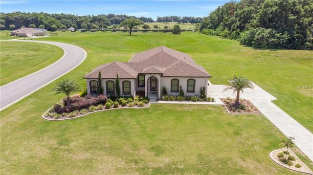 1818 NW 79TH Loop, Ocala, FL 34475 (MLS #G5015885) :: Team Bohannon Keller Williams, Tampa Properties