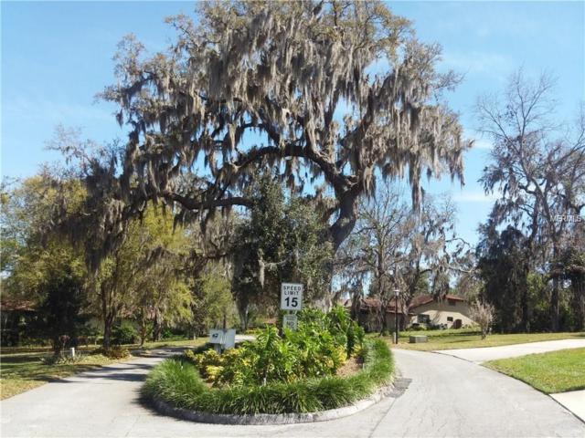 Forest Lane, Eustis, FL 32726 (MLS #G5015902) :: The Duncan Duo Team