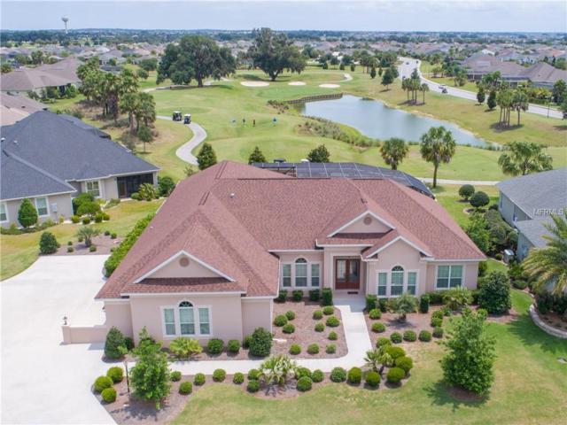 2973 Cedar Grove Loop, The Villages, FL 32163 (MLS #G5015908) :: Team Bohannon Keller Williams, Tampa Properties