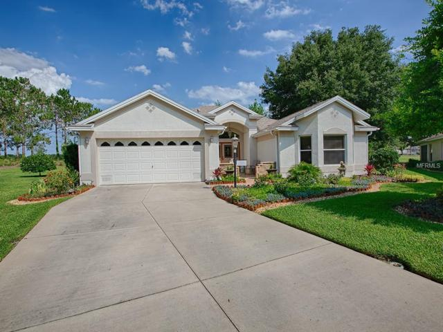 17362 SE 79TH WICKLOW Court, The Villages, FL 32162 (MLS #G5015953) :: Team Bohannon Keller Williams, Tampa Properties