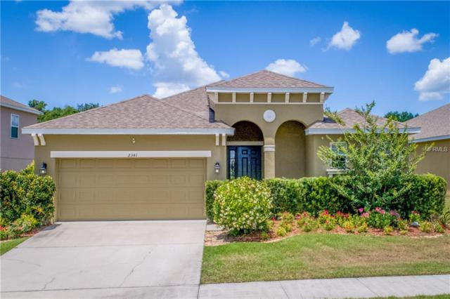 2341 Natoma Boulevard, Mount Dora, FL 32757 (MLS #G5015997) :: Team Bohannon Keller Williams, Tampa Properties