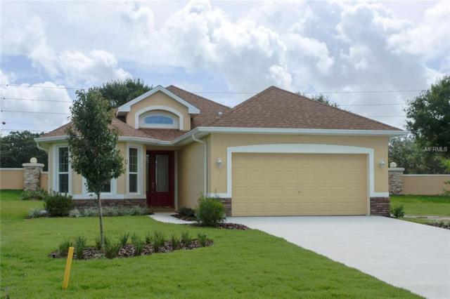 8220 Bridgeport Bay Circle, Mount Dora, FL 32757 (MLS #G5016006) :: Team Bohannon Keller Williams, Tampa Properties