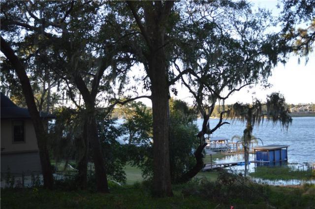Overlook Drive, Mount Dora, FL 32757 (MLS #G5016017) :: Lockhart & Walseth Team, Realtors