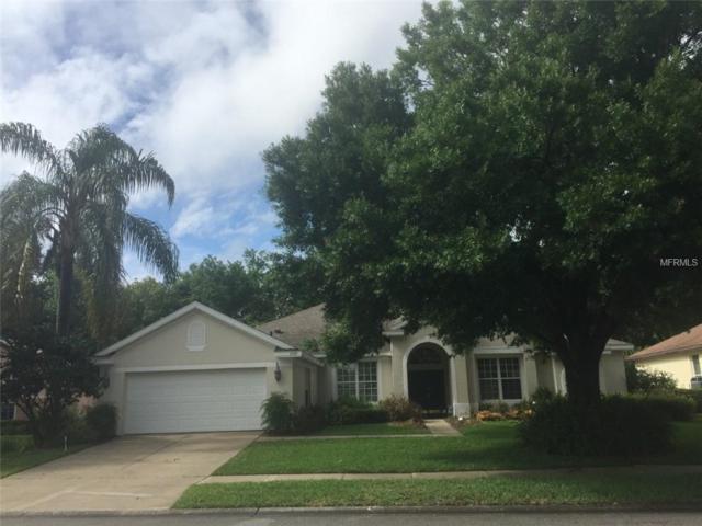 6025 Falconbridge Place, Mount Dora, FL 32757 (MLS #G5016088) :: Premium Properties Real Estate Services